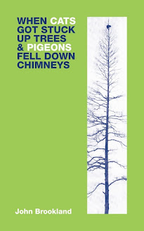 Whwn cats Got Stuck Up Trees by John Brookland