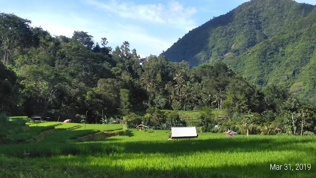 bangle village