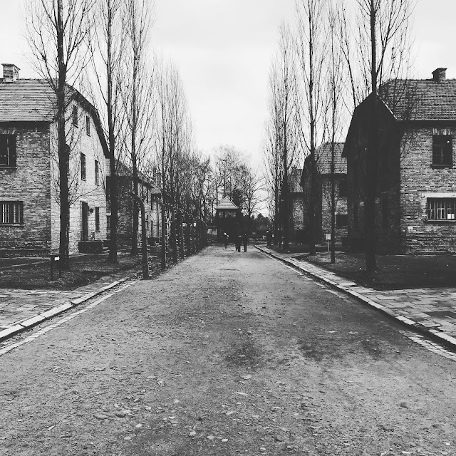 Some of the blocks used for work and living quarters at Auschwitz : My Visit To Auschwitz (and why you should visit too)