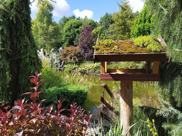 karmnik dla ptaków, zielony dach