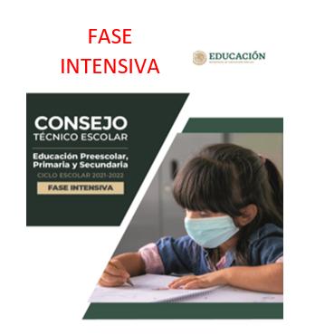 GUIA DE CONSEJO TECNICO ESCOLAR. FASE INTENSIVA CICLO ESCOLAR 2021-2022.