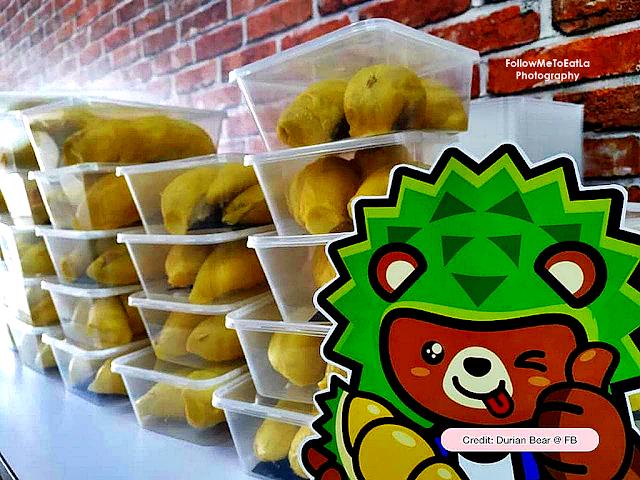 Durian Bear, Petaling Jaya