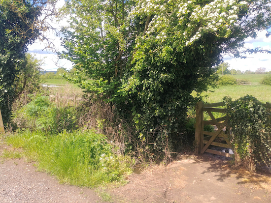 The gate leading to Wymondley footpath 17 and the track up to the start point