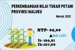 Nilai Tukar Petani di Provinsi Maluku Naik 1,12 Persen pada Maret 2021