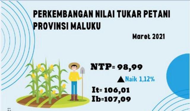 Nilai Tukar Petani di Provinsi Maluku Naik 1,12 Persen pada Maret 2021.lelemuku.com