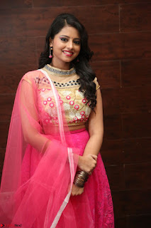 Geethanjali sizzles in Pink at Mixture Potlam Movie Audio Launch 042.JPG