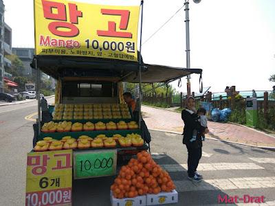 Dalmaji-gil road Tempat menarik di Busan Korea Interesting Place