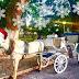 Ιωάννινα:Φέτος ο  Αϊ Βασίλης  φέρνει τα δώρα στο σπίτι σας... με άμαξα!