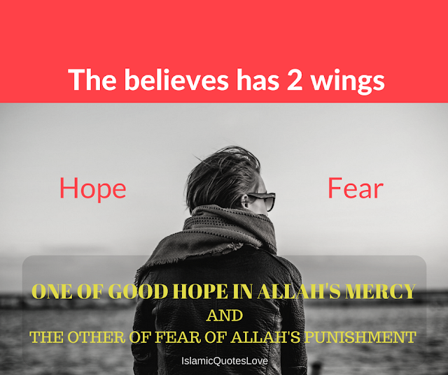 The believes has 2 wings  [ Hope-Fear ] One of good hope in ALLAH's Mercy and The other of fear of ALLAH's punishment .