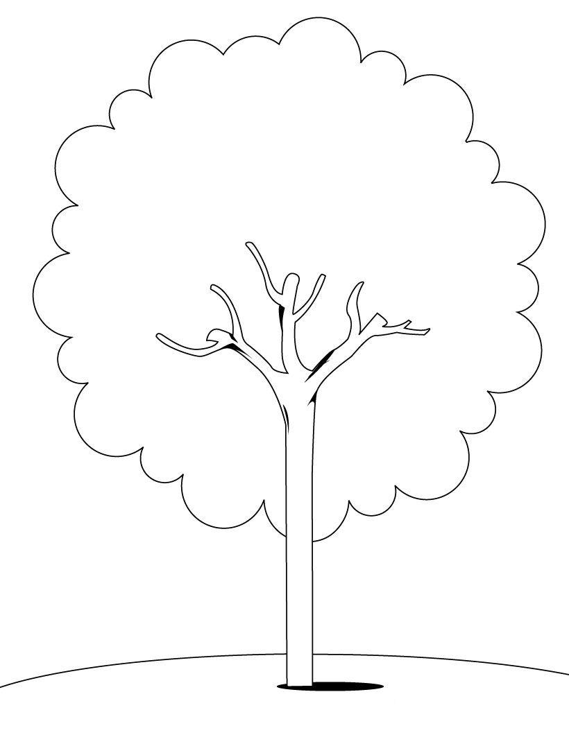Desenhos de rvores para colorir e imprimir toda atual for Como obtiene su alimento un arbol