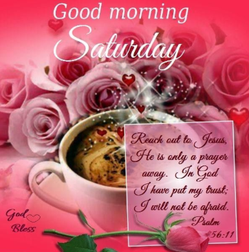 Free latest 587+ Good Morning Saturday HD wallpaper, Photos and Images Download