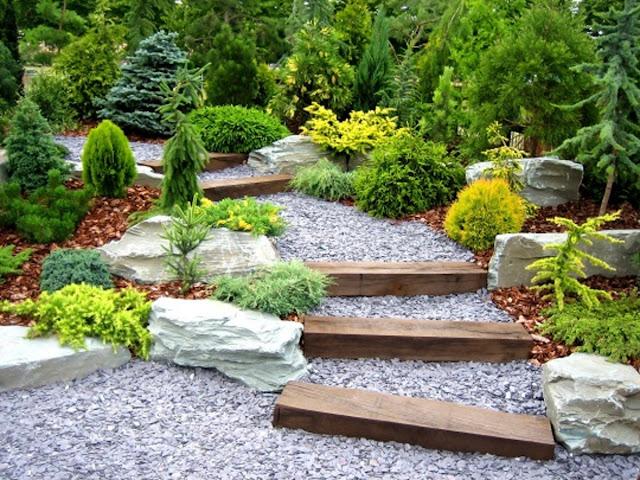 Landscaping Contractor Design your garden