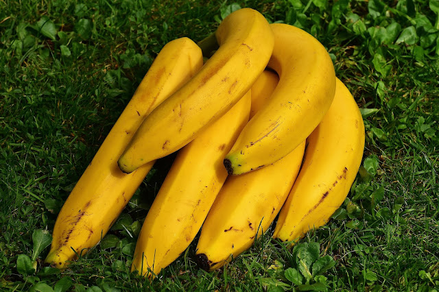 benefits of banana,banana benefits,banana,health benefits of banana,banana health benefits,banana benefits for skin,banana benefits in hindi,banana benefits for hair,benefits,health benefits,health benefits of bananas,banana benefits in urdu,bananas,red banana benefits,banana peel benefits,bananas benefits,benefits of eating banana,banana fruit benefits,benefits of bananas,banana benefits for men,