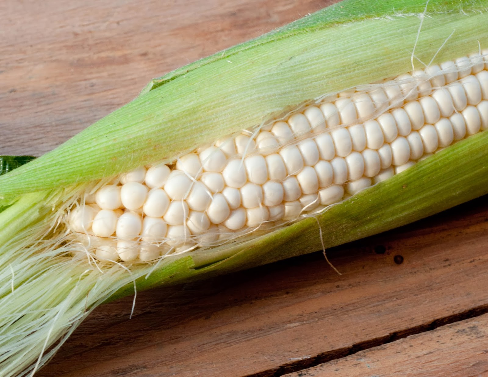 Robson S Farm The Worm In Corn Vs Gmo