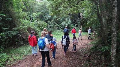 Caucaia: Agência de turismo organiza caminhada na floresta