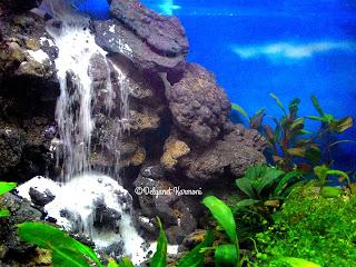aquascape sandfall