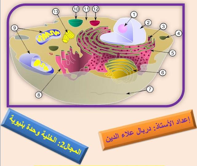 ملخصات العلوم الطبيعية وحدة الخلية لللسنة الثانية ثانوي للاستاذ دربال علاء الدين
