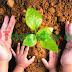 Intensificarán en Tamaulipas Educación Ambiental
