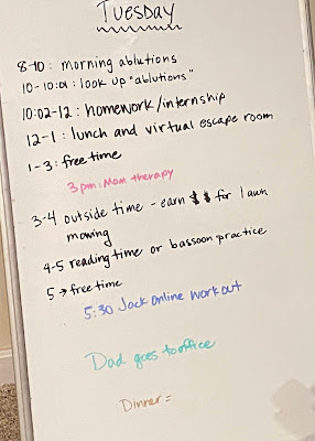 Photo of my whiteboard on which I've written a schedule for Tuesday: 8-10: morning ablutions; 10-10:01: look up ablutions; 10:02-12: hoomework/internship; 12-1 lunch and virtual escape romo; 1-3: Free time; 3-4 outside time - earn $$ for lawn mowing; 4-5 reading time or bassooon practice; 5 free time; 5:30 Jack oonline workout; Dad goes to office