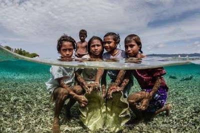 Menjelajahi Wisata Raja Ampat, Kepingan Surga di Ujung Barat Indonesia