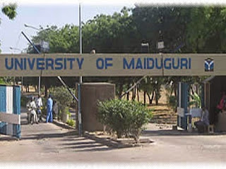 UNIMAID Diploma & Certificate Programmes Form 2020/2021