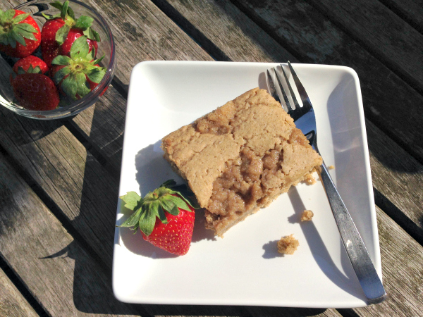 Vegan and Gluten-free Whole Grain Cinnamon Coffee Cake from Kim's Welcoming Kitchen