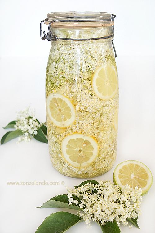 Preparare in casa Sciroppo di fuori di sambuco bevanda dissetante e depurativa - elderberry flowers syrup homemade recipe