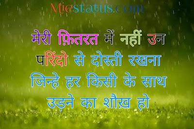 hindi status in hindi