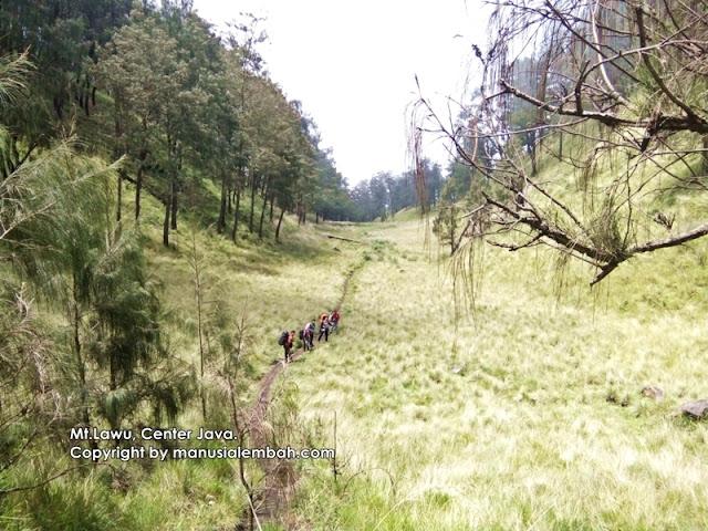 Jalur pendakian gunung lawu via jogorogo