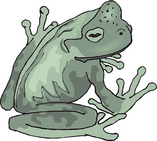 Frog realistic. Free clipart really cool