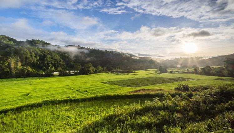 Nuevo repunte del mercado inmobiliario rural marca la recuperación del sector