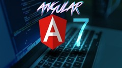 Angular 7 Course by Lior Avital -Become an Angular Expert