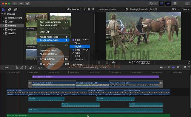 MULTIMEDIA - Download Final Cut Pro 10 4 6 – Phần mềm