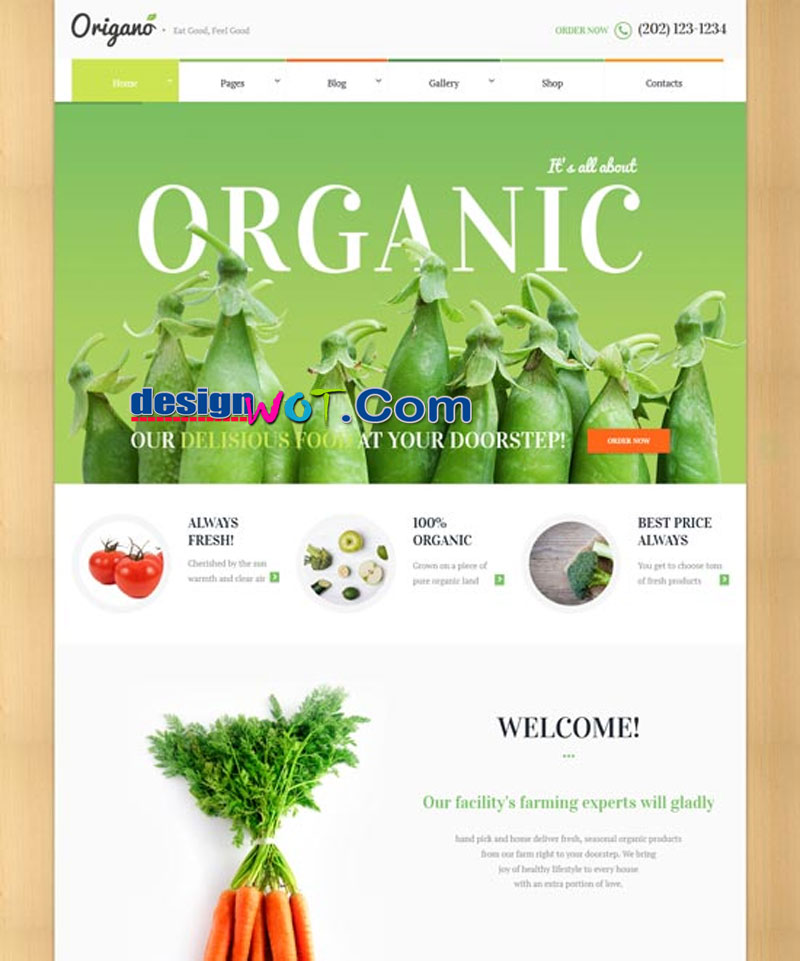 Origano - Organic Food & Eco Farm Theme