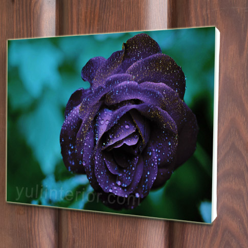 Roses Canvas Art, Print in Port Harcourt, Nigeria