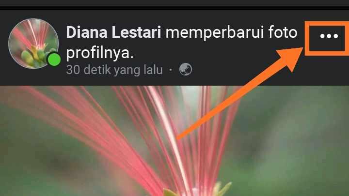 Kenapa tidak bisa mengganti foto profil di facebook?