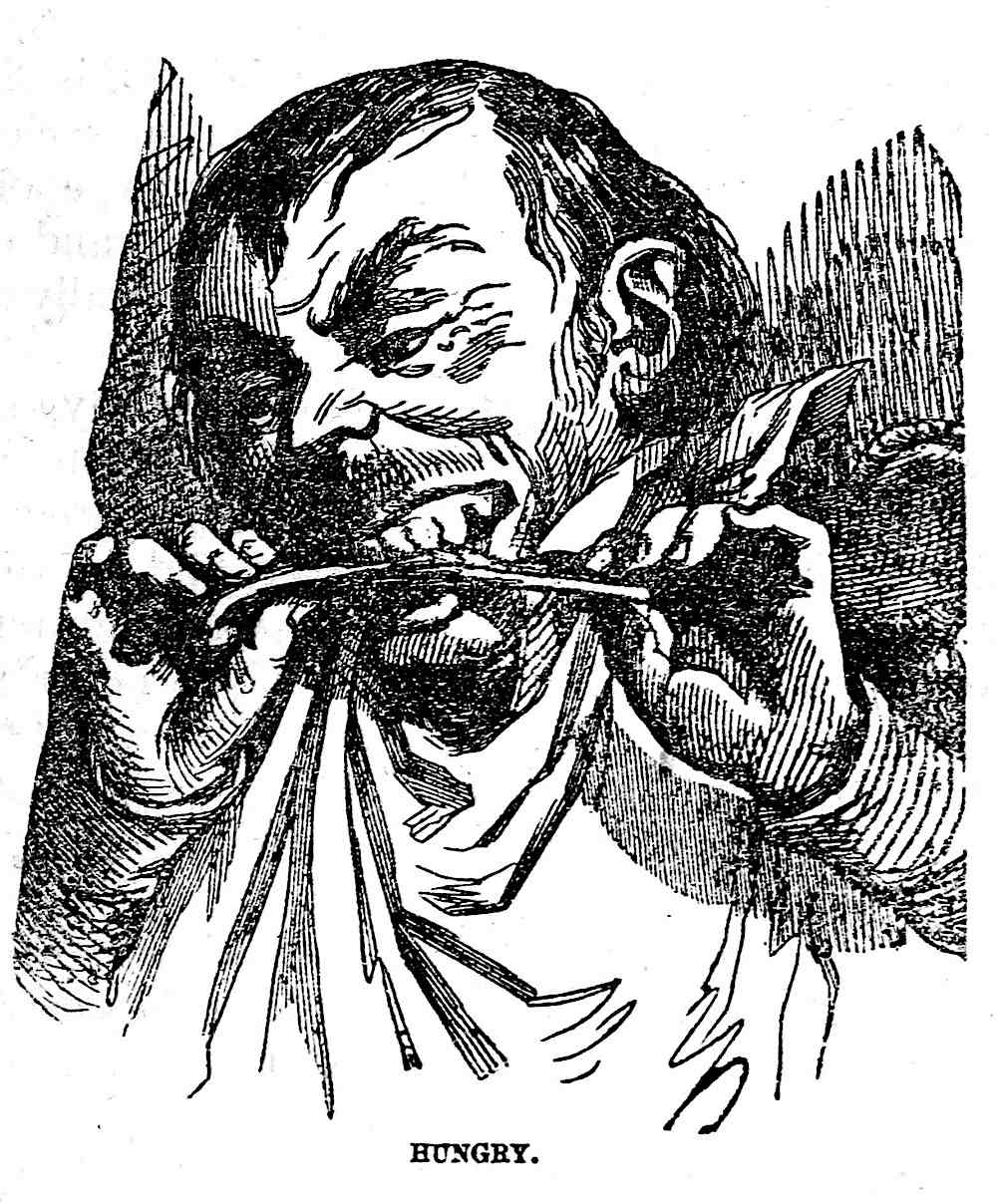 1855 bad etiquette, an illustration of a man chewing a bone