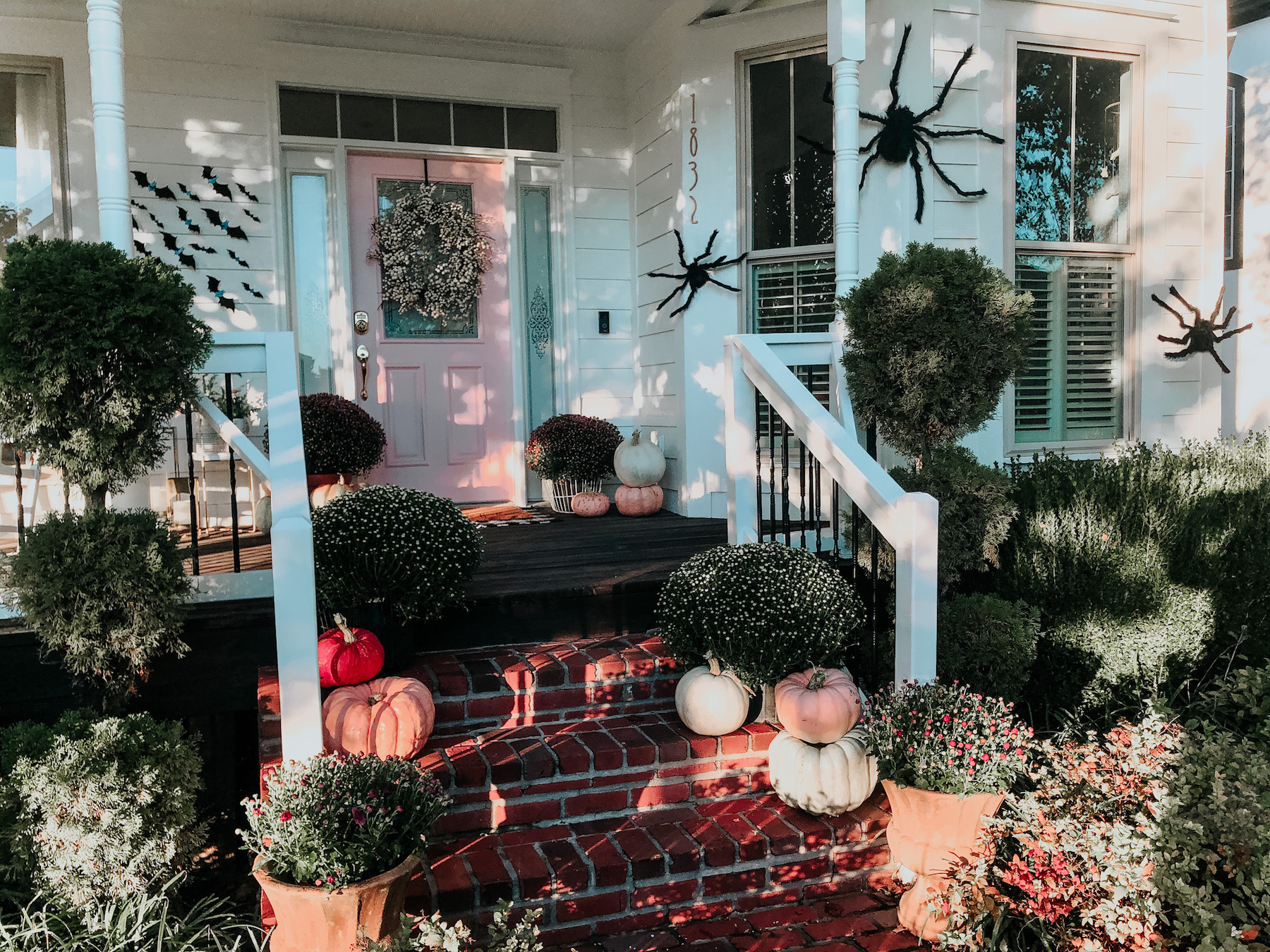 Spooky Halloween Exterior with Huge Spiders, Bats, and Mums