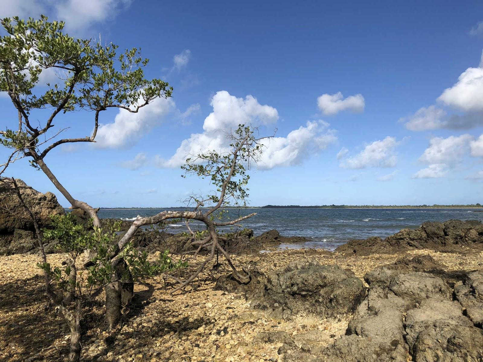 Ilha da Pedra Furada - Baia de Camamu