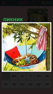 на дереве висит открытый зонтик, внутри продукты для пикника