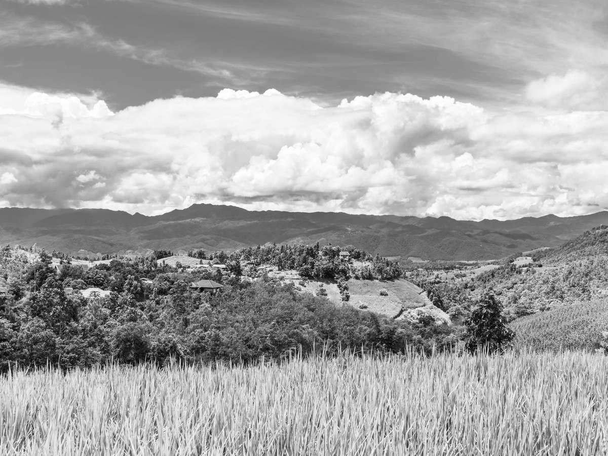 Учет использования земель сельскохозяйственного назначения
