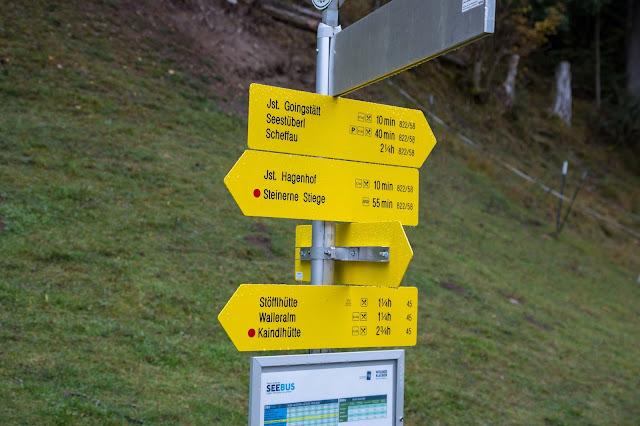 Hintersteiner-See-Rundweg  Wanderung Scheffau  Wilder Kaiser  Wandern Kitzbüheler alpen Tirol  Leichte Tour in traumhafter Kulisse 06