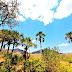 A Gestão Ambiental no município de Goiás, berço da civilização Goiana