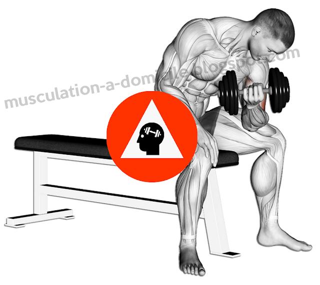 exercice musculation biceps curl concentré