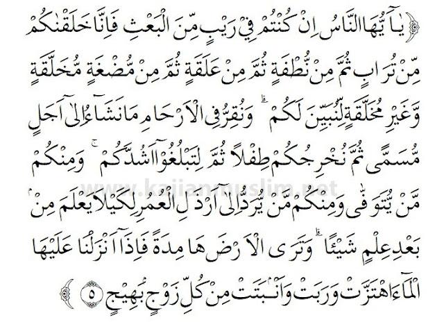 Terjemahan Surat Al-Hajj Ayat 5