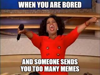 Too many memes meme