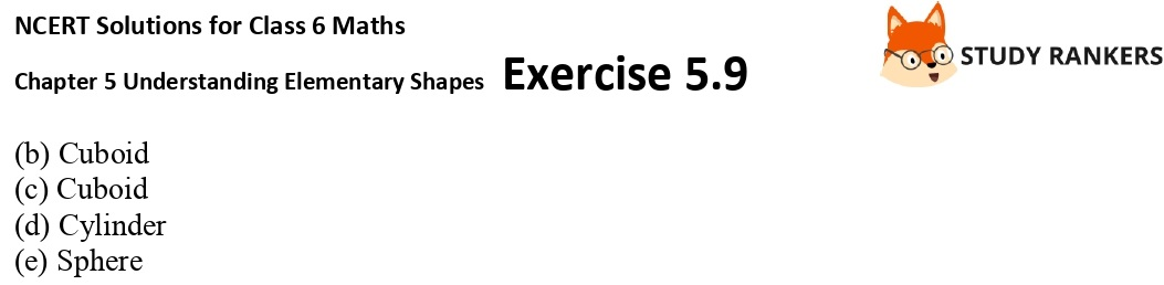 NCERT Solutions for Class 6 Maths Chapter 5 Understanding Elementary Shapes Exercise 5.9 Part 2