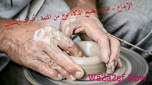 وظائف شاغرة للمحاسبين في أرجاء الوطن العربي | وظائف ناو