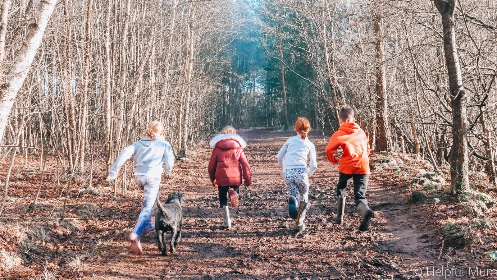 running through the woods