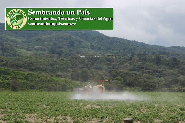 fumigación agrícola
